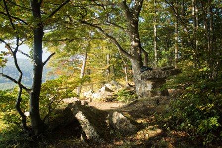 Wolfstisch P4cFotostudio Mittelmühle Sontra Geologisch Wandern