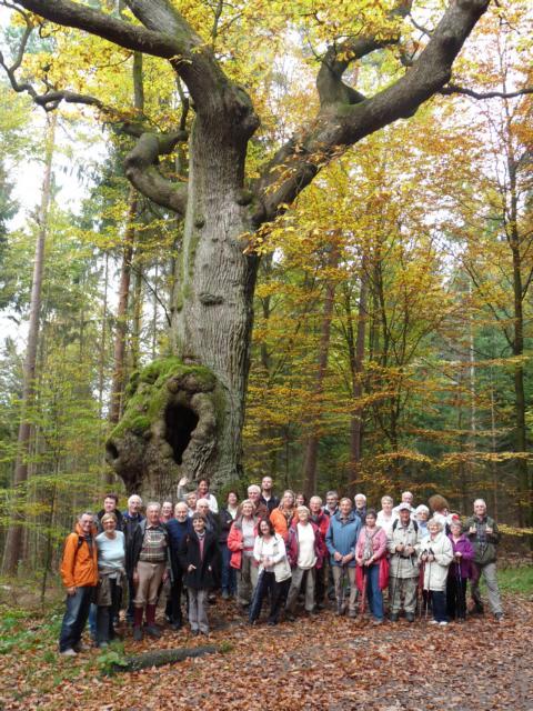 wgruppeaneiche herbst13 pfiP1280799 Helsa, Kaufungen und der Kaufunger Wald