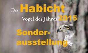 2015-04-17 Naturpark Habichtswald_Sonderausstellung Habicht