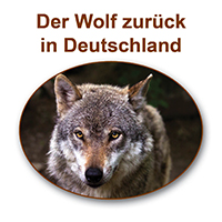 2016 03 03 Wolfsvortrag NABU Schmidt Vortrag: Der Wolf zurück in Deutschland
