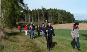 (c)Naturpark Habichtswald/OHartmann/Achtsamkeitswandern