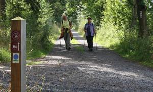 (c)Naturpark Habichtswald/Claudia Thöne/2012/Wandern auf dem H8