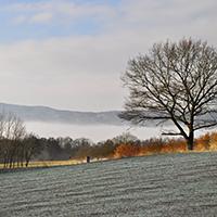 Naturpak Habichtswald_Horst Siebert_Firnsbachtal Winter