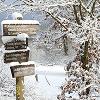 Naturpak Habichtswald_Ludwig Karner_Kastanienallee Winter