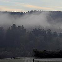 Naturpak Habichtswald Ludwig Karner Nebel bei Naumburg Familienwaldbaden   eine gemeinsame Auszeit im Wald