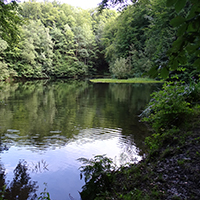 Naturpark HAbichtswald_JDepenbrock_Hangarsteinsee