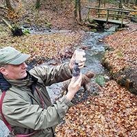 Naturpark Habchtswald 2019 HorstKlinge Survivatour Silbersee Survivaltour durch die Ahneklamm