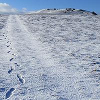 Naturpark Habichtswad Johannes Brenner Wandern im Winter Winterwanderung durch den Hohen Habichtswald