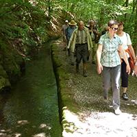 Naturpark Habichtswald_2014_AHartmann_Druselpfad