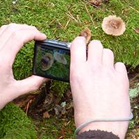 Naturpark Habichtswald 2014 AHartmann Fotografieren Makro Fotografie für Kinder