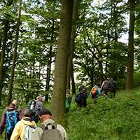 """Naturpark Habichtswald 2014 AHartmann Wanderer Hundsberg After Work Wanderung"""" am Tag des Wanderns mit Kartenkunde"""