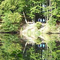 Naturpark Habichtswald_2016_OHartmann_Hangarsteinsee