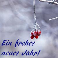Naturpark Habichtswald_2016_Pixabay_frohes neues Jahr