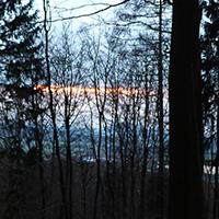 Naturpark Habichtswald_2019_Annika Ludolph_Nachtwanderung