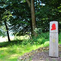 Naturpark Habichtswald_2019_AnnikaLudolph_HvM Riede