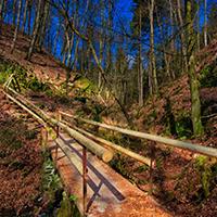 Naturpark Habichtswald_2019_Horst Siebert_Fotorunde Firnsbachtal