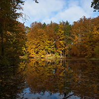 Naturpark Habichtswald_2019_Horst Siebert_Hangarsteinsee Herbst