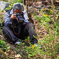 Naturpark Habichtswald_2019_pixabay_Fotografieren