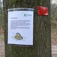 Naturpark Habichtswald_2020_Jürgen Depenbrock_Goddelbusch