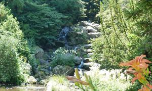 Naturpark Habichtswald_AHartmann_2013_Bergpark Stille