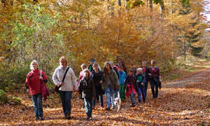Naturpark Habichtswald_AHartmann_2013_Ferienwandern