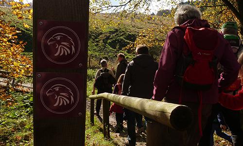 Naturpark Habichtswald AHartmann 2013 wandern Habichtswaldsteig Herbstwandern auf dem Habichtswaldsteig in der Gruppe