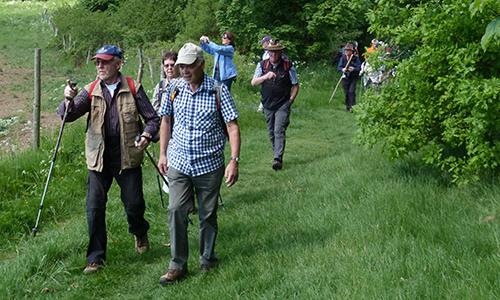 """Naturpark Habichtswald AHartmann 2014 Wandergruppe """"…und ich bewege mich doch!"""" Wandern und Natur für Wieder /Einsteiger"""