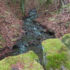 Naturpark Habichtswald_AHartmann_2014_Wasser Bergpark