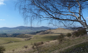 Naturpark Habichtswald_AHartmann_2015_Dörnberg im Frühling