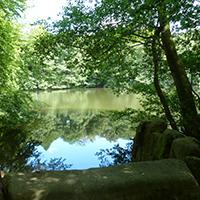 Naturpark Habichtswald_ALudolph_Asch