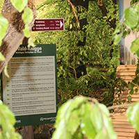 Naturpark Habichtswald Annika Ludolph Ausstellung2 Naturparkzentrum Habichtswald öffnet mit neuer Ausstellung