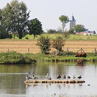 Naturpark Habichtswald_Annika Ludolph_Glockenborn