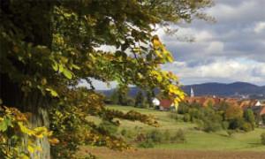 (C)Naturpark Habichtswald/BMietzner/Herbstflyer