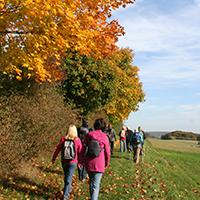 Naturpark Habichtswald_CThöne_Herbstwanderung