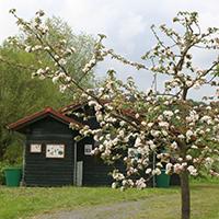 Naturpark Habichtswald_Claudia Thöne_Hummelwerkstatt