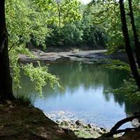 Naturpark Habichtswald Erlenloch Im Hier und Jetzt sein in der Natur   Achtsamkeitswanderung am Erlenloch
