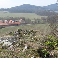 Naturpark Habichtswald Habichtstein Engelsüßer Habichtstein   Exkursion zu einem Basaltfelsen und seinem Farn