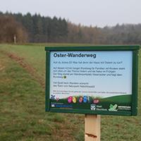 Naturpark Habichtswald_Hasenacker_Annika Ludolph (4)