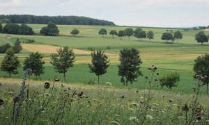 Naturpark Habichtswald_IDippel_H1