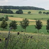 Naturpark Habichtswald_IDippel_H1 Breuna