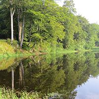 Naturpark Habichtswald_JBrenner_Sichelbach