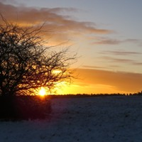 Naturpark Habichtswald_JBrenner_Sonnenuntergang Winter