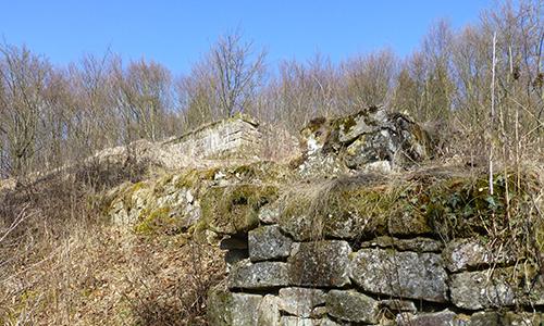 Naturpark Habichtswald JDepenbrock Rodersen Rodersen   eine Dornröschenburg und ihre spannende Geschichte