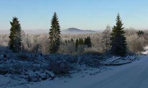 Naturpark Habichtswald_Karner_Winter Habichtswald