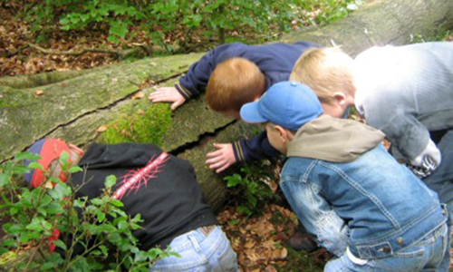 Naturpark Habichtswald Kinder Herbstferien Programm für Kinder