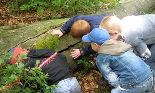 Naturpark Habichtswald Kinder Naturerlebnisse für Kinder