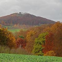 Naturpark Habichtswald_Krackrügge_Weidelsberg Herbst
