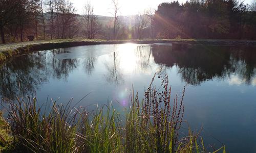 Naturpark Habichtswald OttoHartmann Naumburg Achtsamkeitswanderung auf dem H8