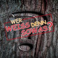 Naturpark Habichtswald_Pixabay_Fragezeichen