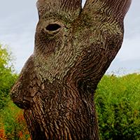 Naturpark Habichtswald_Pixabay_Waldgeist2